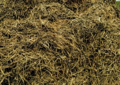 ground-hemp-pile